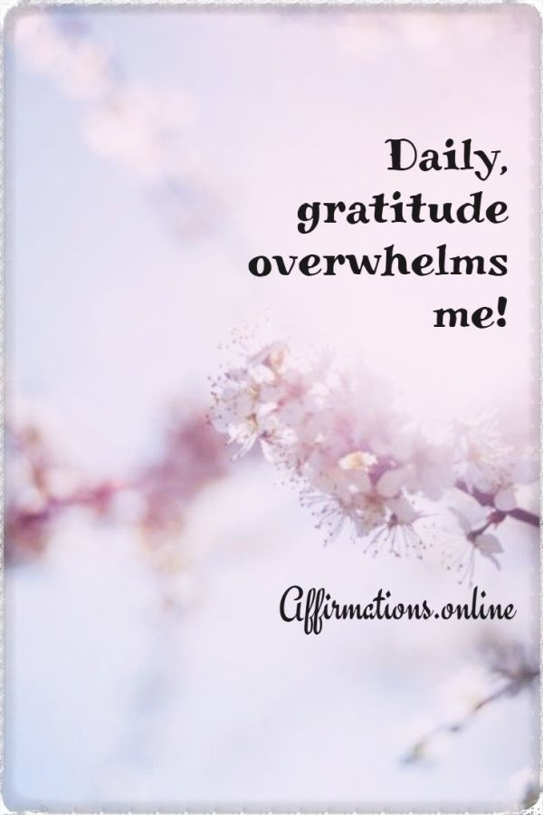 Positive affirmation from Affirmations.online - Daily, gratitude overwhelms me!