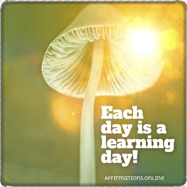 Each day is a learning day!