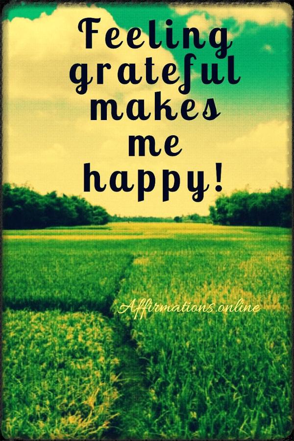 Positive affirmation from Affirmations.online - Feeling grateful makes me happy!