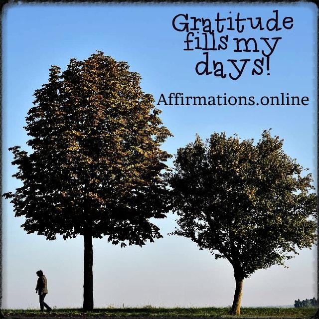 Positive affirmation from Affirmations.online - Gratitude fills my days!