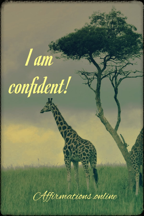 Positive affirmation from Affirmations.online - I am confident!