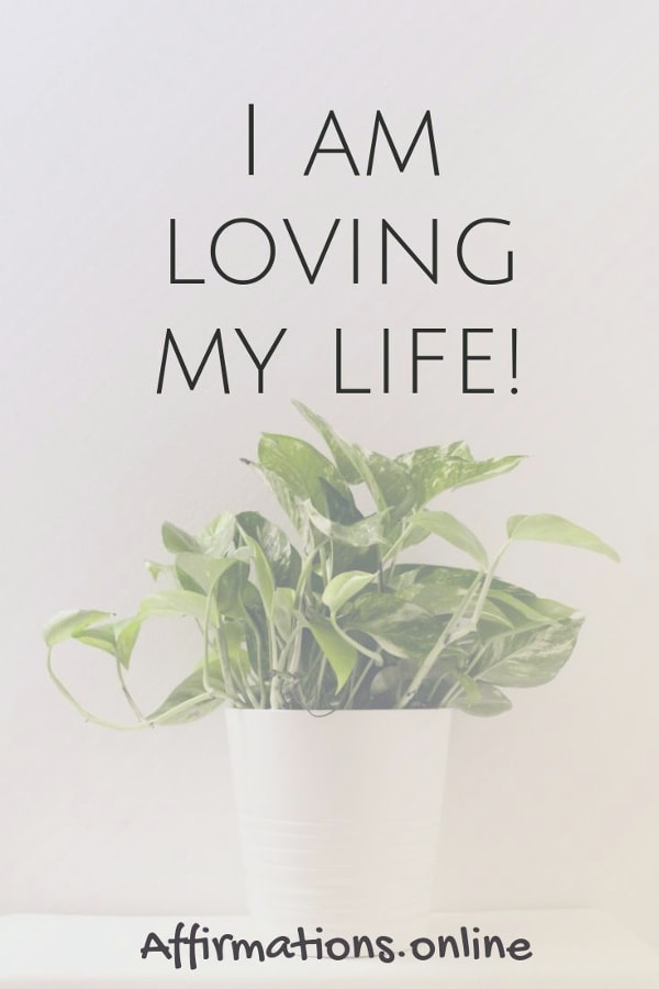 Positive affirmation from Affirmations.online - I am loving my life!