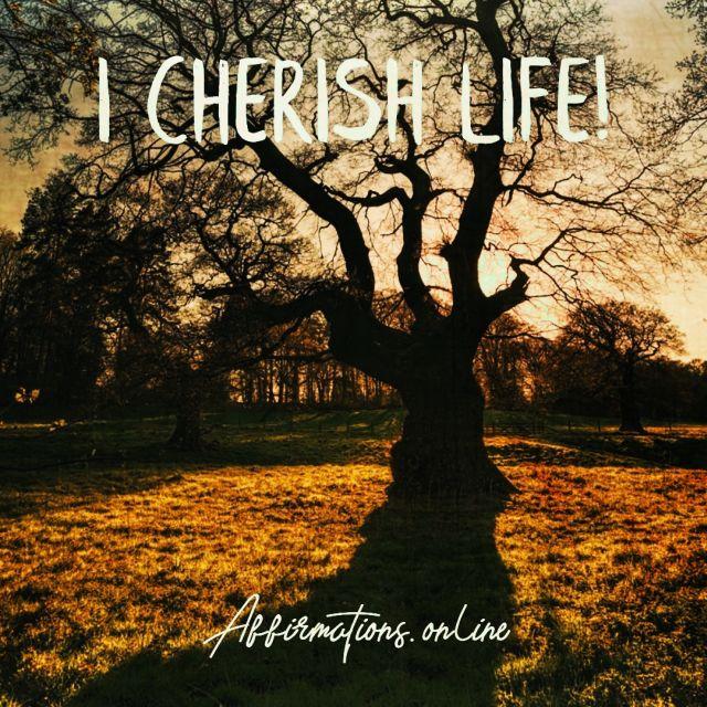 Positive affirmation from Affirmations.online - I cherish life!