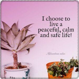 I choose to live a peaceful, calm and safe life!