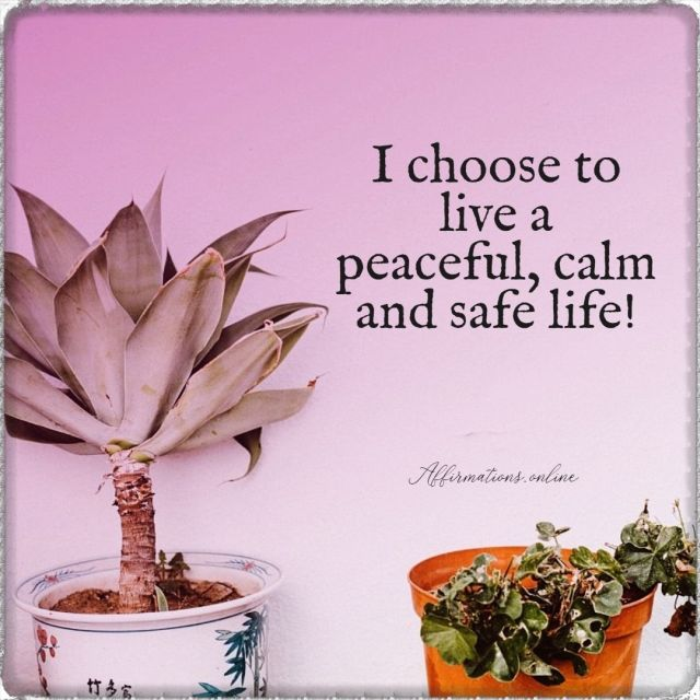 I choose to live a peaceful, calm and safe life!