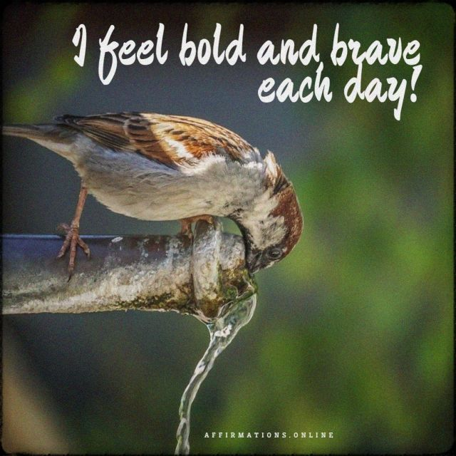 Positive affirmation from Affirmations.online - I feel bold and brave each day!