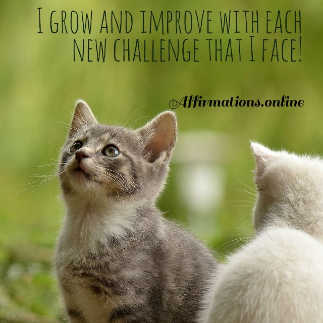 Image affirmation from Affirmations.online - I grow and improve with each new challenge that I face!