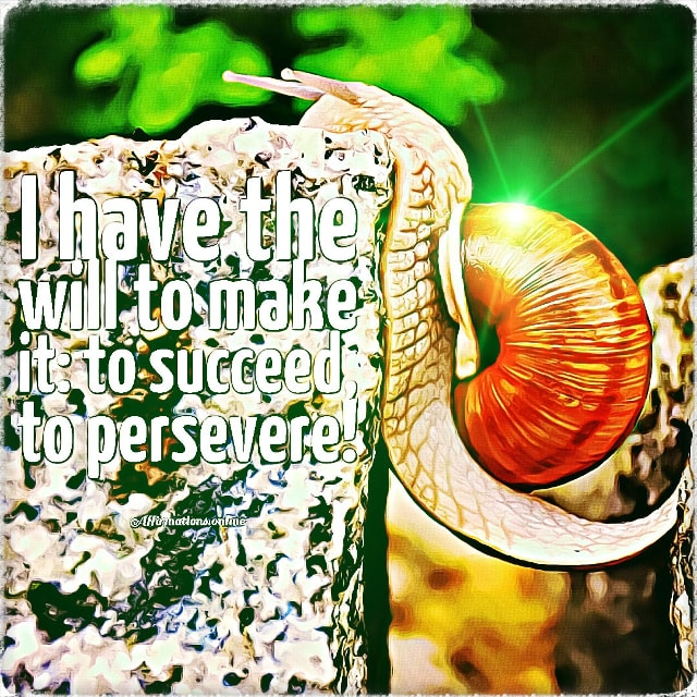 Positive affirmation from Affirmations.online - I have the will to make it: to succeed, to persevere!