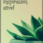 In my life, I keep on staying inspired!