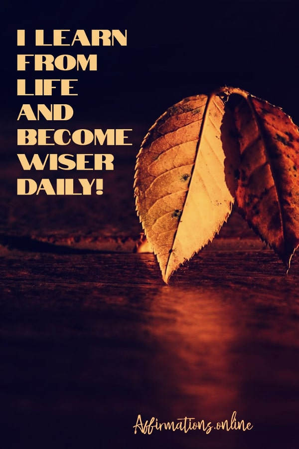 Positive affirmation from Affirmations.online - I learn from life and become wiser daily!