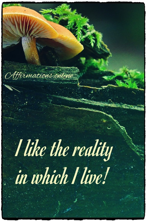 Positive affirmation from Affirmations.online - I like the reality in which I live!