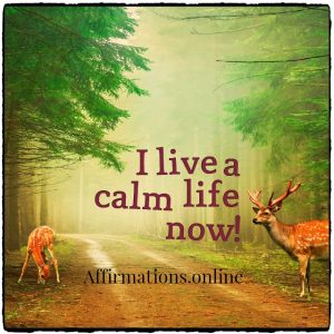 Positive affirmation from Affirmations.online - I live a calm life now!