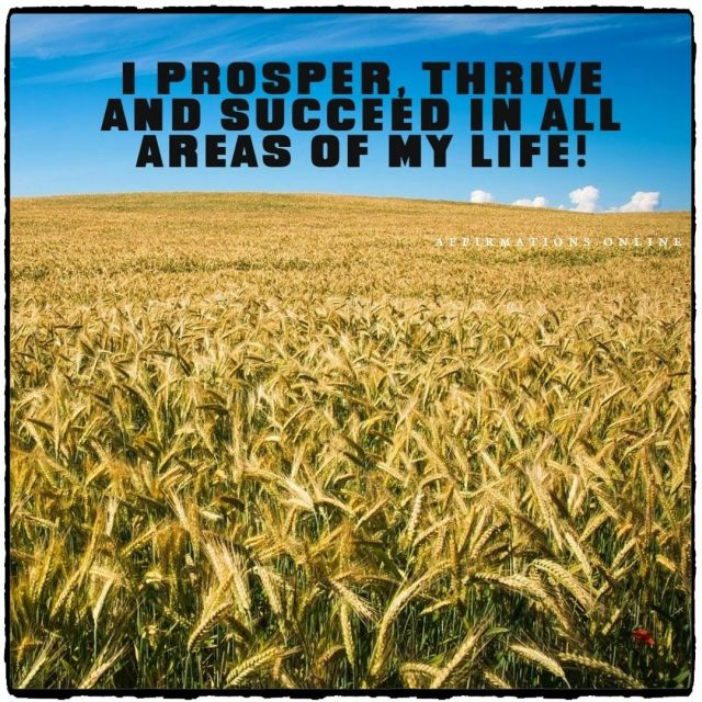Positive affirmation from Affirmations.online - I prosper, thrive and succeed in all areas of my life!