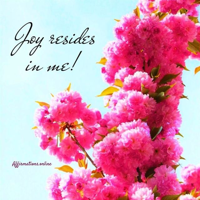 Positive affirmation from Affirmations.online - Joy resides in me!