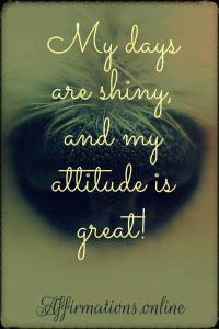 Positive affirmation from Affirmations.online - My days are shiny, and my attitude is great!
