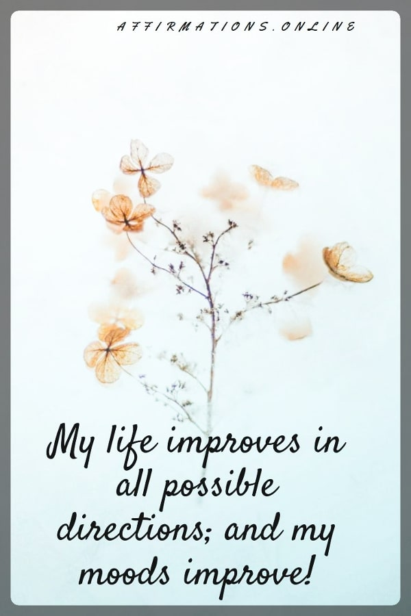 Positive affirmation from Affirmations.online - My life improves in all possible directions; and my moods improve!