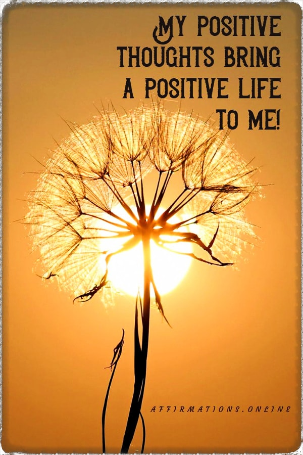 Positive affirmation from Affirmations.online - My positive thoughts bring a positive life to me!