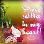 Peace settles in my heart!