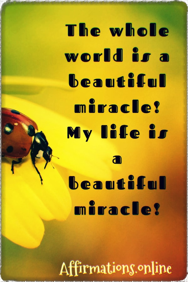 Positive affirmation from Affirmations.online - The whole world is a beautiful miracle! My life is a beautiful miracle!
