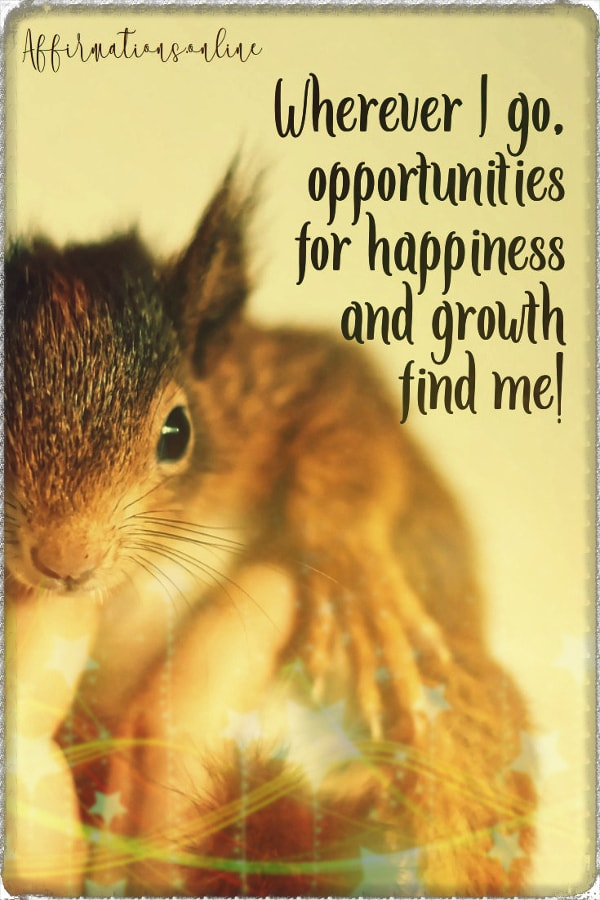 Positive affirmation from Affirmations.online - Wherever I go, opportunities for happiness and growth find me!